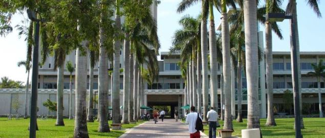 Walkway leading to the Otto G. Richter Library on the campus of the University of Miami.