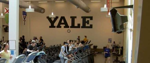 The Adrian C. Ace Israel Fitness at Yale University in the Payne Whitney Gym.
